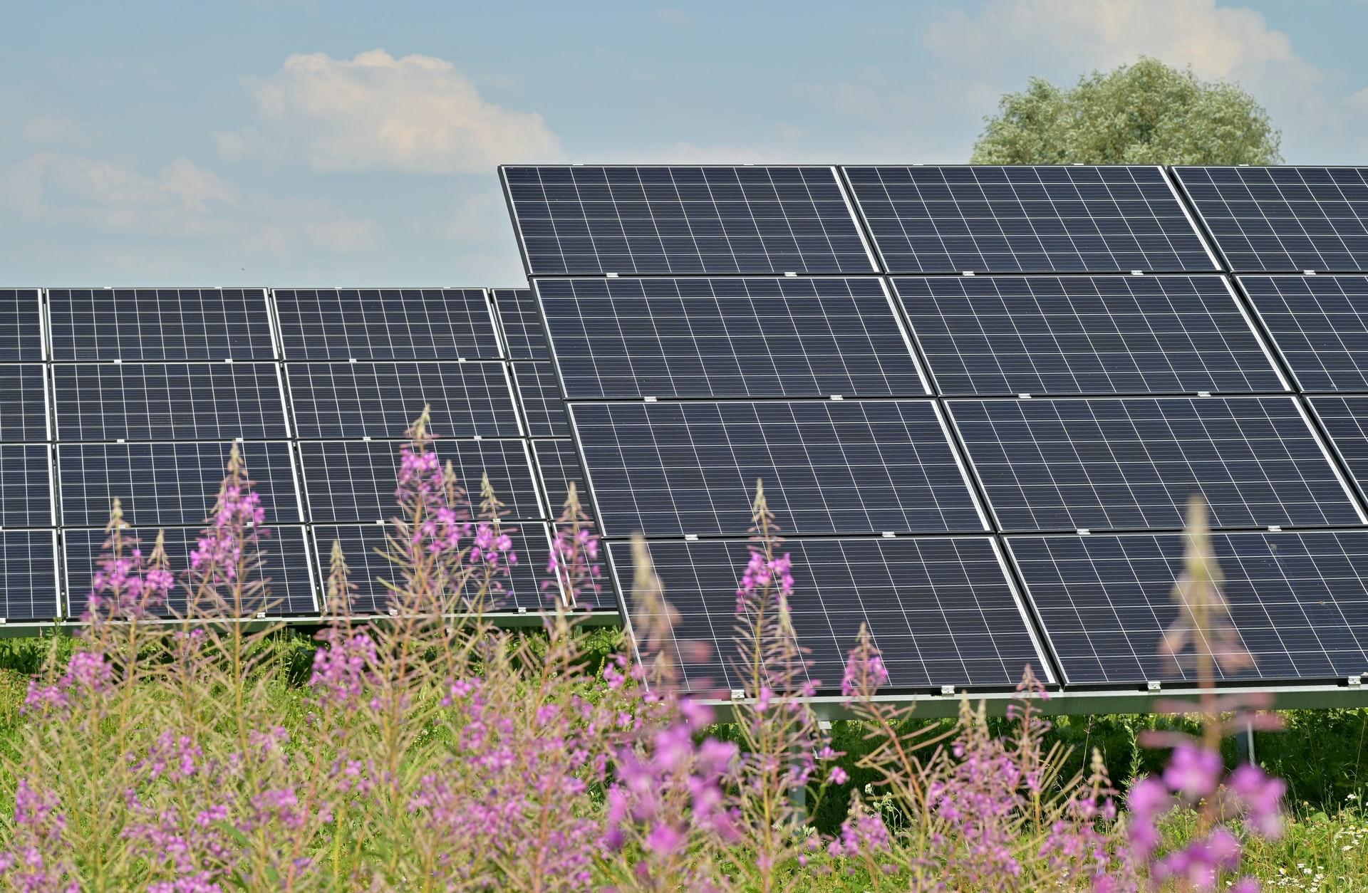 pannello fotovoltaico ongrid